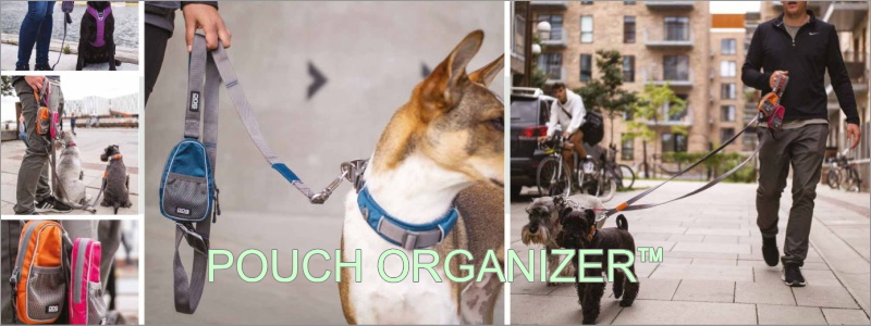 Pouch Organizer(ポーチオーガナイザー)