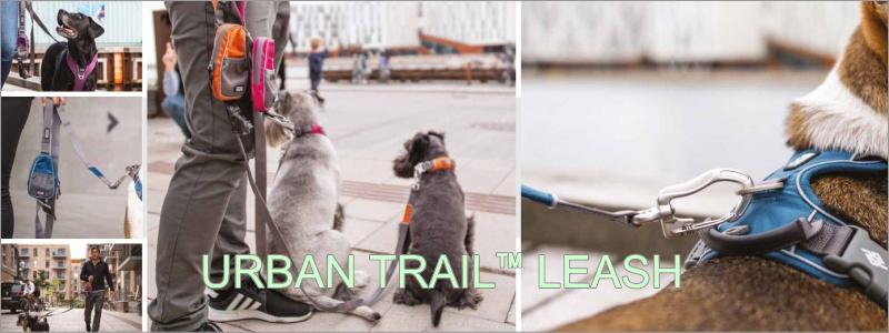 Urban trail leash(アーバントレイルリーシュ)
